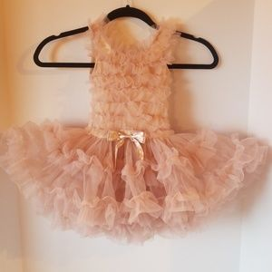 """Poofiest of Poof"" Girls 18M Champagne Pink Dress"
